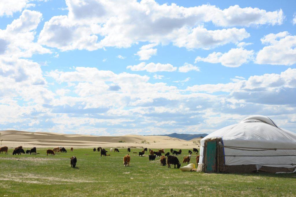 モンゴル 景色